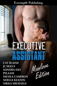executive-assistant-manlove21s-1